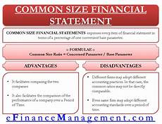 Common Size Financial Statements Common Size Financial Statements