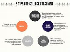 College Study Tips For Freshmen Tips For Freshmen College Students Handout Student S