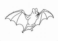 Fledermaus Ausmalbild Kostenlos Fledermaus Bilder Zum Ausmalen Malvorlage Gratis