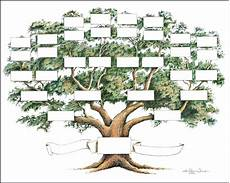Family Tree Outlines Free Family Tree Chart 5 To 6 Generations Genealogy 14x18