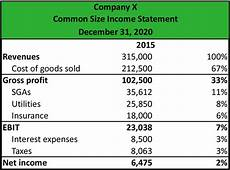 Common Size Financial Statements What Is A Common Size Income Statement Definition