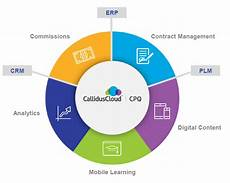 Callidus Cloud Calliduscloud How To Get A Sales Force From Lead To Money