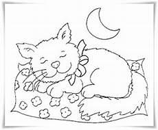 Ausmalbilder Katze Ausdrucken Ausmalbilder Zum Ausdrucken Ausmalbilder Katzen
