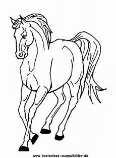 Ausmalbilder Pferde Haflinger Ausmalbilder Pferd 12 Tiere Zum Ausmalen Malvorlagen