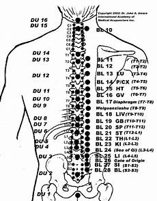 Spinal Pressure Points Chart Acupuncture Points Spine 450x577 Gif Acupuncture