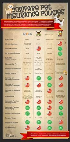 Pet Insurance Comparison Chart Compare Pet Insurance Policies Infographic Infographic