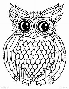 Owl Sheets Coloring Pages