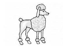 hunde ausmalbilder f 252 r erwachsene