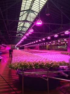 Led Lights Greenhouse Led Lighting And Its Effect On Plants Growers And The