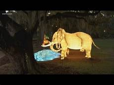 Zoo Lights New Orleans An Exclusive Look At The New Audubon Zoo Lights Youtube