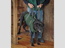 Dog Sling Lift / Dog Lift    Orvis UK