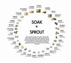 Soak And Sprout Chart Your Guide To Soaking Amp Sprouting Whole Grains Beans