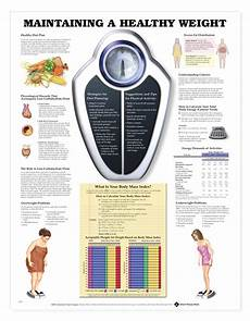 Healthy Weight Chart Maintaining A Healthy Weight Anatomical Chart Anatomy