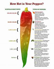 Chili Heat Chart Spice It Up Mexico S Spiciest Party Snacks The