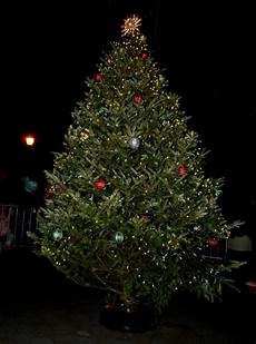 Ridgewood Christmas Tree Lighting 2018 Annual Shore Road Tree Lighting Brings Bay Ridge Together