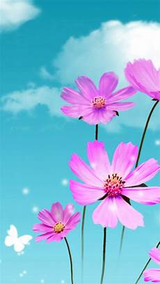 flower wallpaper for cell dreamy beautiful galsang flower cloudy sky iphone se