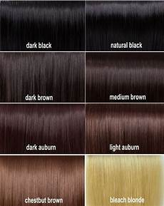 Different Shades Of Brown Hair Colour Chart Shades Of Brown Hair Pinterest Colour Chart Dark
