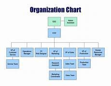 Firm Organization Chart Hospital Organizational Chart Template Success