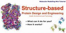 Institute For Protein Design Protein Engineering