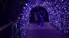 Houston Lights 2017 Houston Zoo Lights 2017 Part 1 Youtube