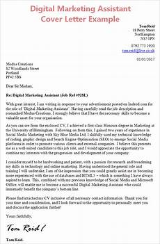 Cover Letter Examples Marketing Digital Marketing Assistant Cover Letter With Work Experience