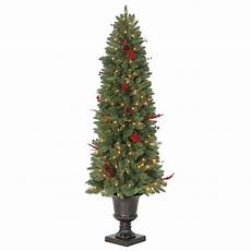 Home Depot Trees With Lights Martha Stewart Living 6 Ft Winslow Potted Artificial