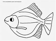 Fisch Bilder Zum Ausmalen Und Ausdrucken Kostenlos Malvorlagen Fisch