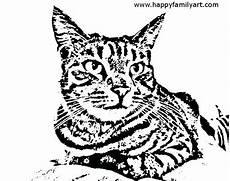 Malvorlage Katze Getigert Tabby Cat Coloring Pages At Getcolorings Free