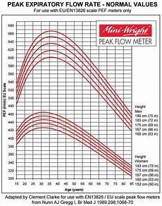 Flow Meter Chart Asthma Peak Flow Diary Peak Flow Meter Readings Patient