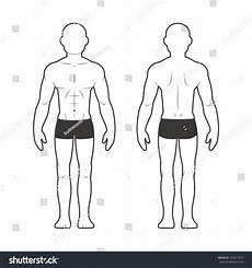 Outline Of Human Body Front And Back Medical Body Chart Muscular Man Stock Illustration