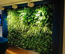 Plant Wall Lighting Green Walls Living Walls Office Landscapes
