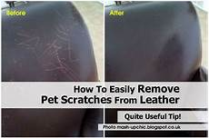how to easily remove pet scratches from leather
