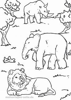 malvorlage tiere afrika ausmalbilder kostenlos herunterladen