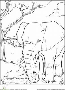 elephant worksheet education