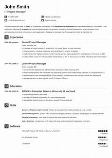 Professional Resume Templates For Word Best Resume Builder Online Create A Resume In A Few Clicks