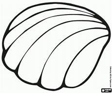 Muschel Ausmalbilder Malvorlagen Ausmalbilder Eine Marine Muschel Zum Ausdrucken