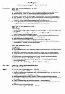 Director Of Sales Resume Sales Director Digital Resume Samples Velvet Jobs