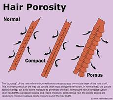 Hair Porosity Chart Tales Of My Waist Length Hairventure All About Hair Porosity