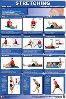 Lower Back Stretches Chart Chart Lower Body 10 95 Fitness Exchange