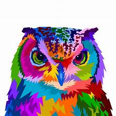 Colorful Owl Art Colorful Owl With Style Pop Art Vector Premium Download