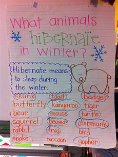 Animal Chart For Kindergarten Welcome To Room 36 January Wrap Up