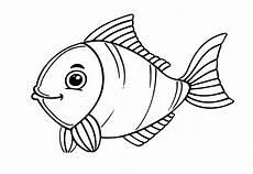 Window Color Malvorlagen Fische Kostenlos Ausmalbilder Meerestiere Kinderbilder