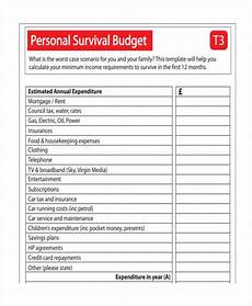 Examples Of Budgets Annual Survival Budget