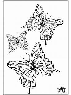 Malvorlagen Schmetterlinge Malvorlagen Schmetterlinge