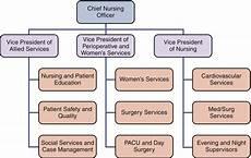 Centralized Organizational Chart Decentralization And Shared Governance Nurse Key