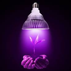 Types Of Light Bulbs For Growing Plants Oxyled Led Plant Grow Light Bulb Hydroponic Plant Grow