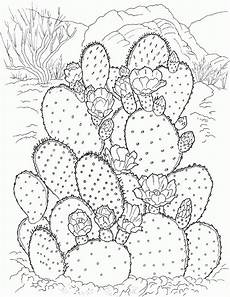 Cactus Plant Coloring Pages Free Printable Cactus Coloring Pages For Flower