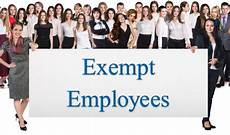 Definition Of Exempt Employees Our Current White Paper Professional Employee Exemption