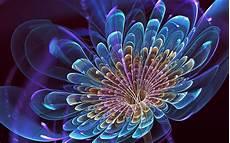 flower abstract 4k wallpaper cool abstract flower wallpaper hd pixelstalk net