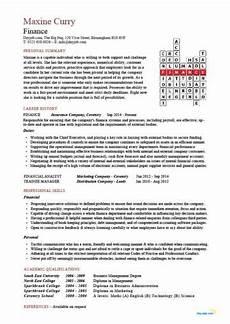 Cv Personal Statement Examples Finance Financial Cv Template Business Administration Cv